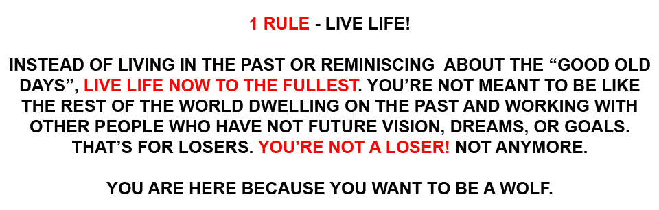 Start Here Live Life